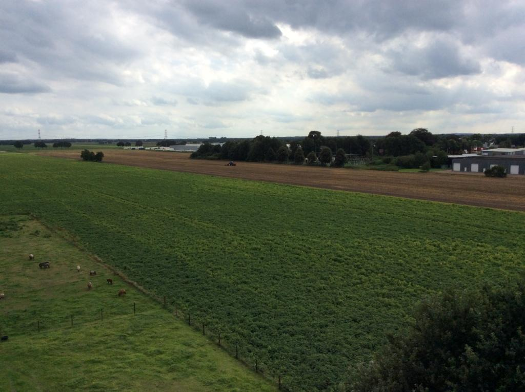 Foto landbouwgrond Rheezerveen